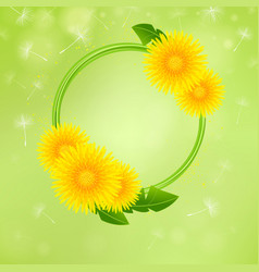 floral background with dandelions vector image