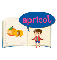little boy and fresh apricot vector image vector image