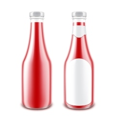 Set of GlassTomato Ketchup Bottle for Branding vector image vector image