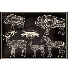 Diagram cut carcasses boar bison deer horse vector