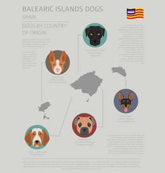 Dogs country origin spain balearic islands vector