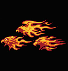eagle head burning fire flame logo set vector image