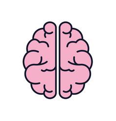 isolated brain icon fill design vector image