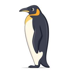king penguin animal standing on a white vector image