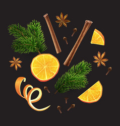 large set of spices orange fir branches vector image