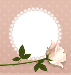 pink rose on a background of polka dots vector image