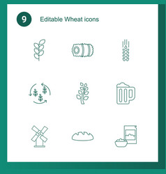 wheat icons vector image