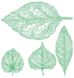 set of detailed green leaves vector image vector image