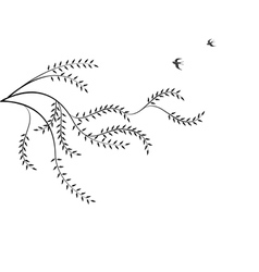 Branch willow and birds isolated on white backg vector