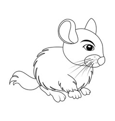 cartoon chinchilla outline rodent isolated on vector image