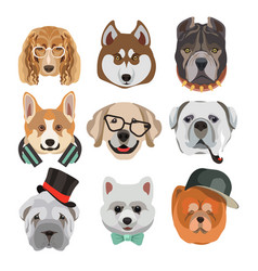 Dog heads or faces with eyeglasses and hats vector