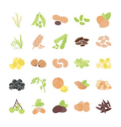 Grain and nuts icons pack vector