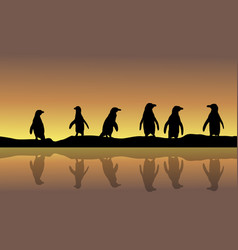 landscape of penguin silhouette at sunset vector image