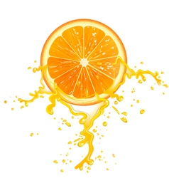 Orange slice vector
