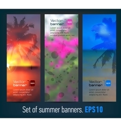 Banners with blurred summer back palm silhouette vector image