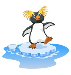 Happy cartoon penguin rockhopper on ice vector image vector image