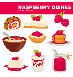 delicious healthy raspberry dishes and desserts vector image