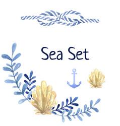 Hand drawn watercolor sea set with water plant vector