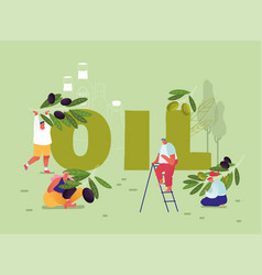 Pure olive oil production and using concept male vector
