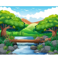 Scene with river through the forest vector