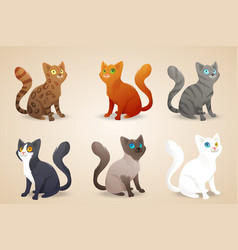 Set of cute cartoon cats with different colored vector image