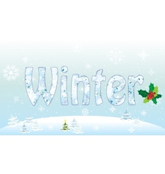 Winter pattern christmas theme mistletoe vector image