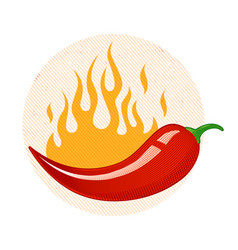 chili peppers in fire vector image vector image