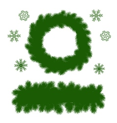 spruce branches vector image vector image