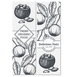 banner set with hand drawn branch of vector image