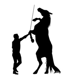 black silhouette of man training a horse to vector image