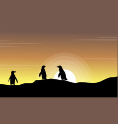 Landscape of beach at sunset with penguin vector