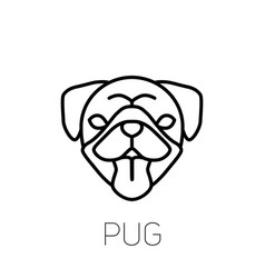 pug tongue out dog breed linear face icon vector image
