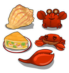 Set of crab cake and sea shells isolated vector