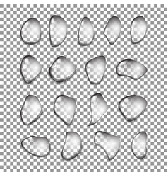 set of relistic water drops isolated on vector image