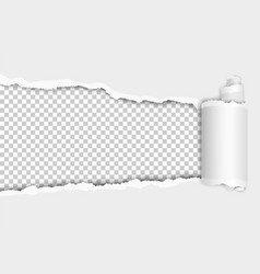 Torn hole in sheet of white paper with shadow vector