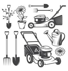 Set of vintage garden designed elements vector image