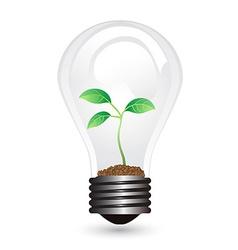 light bulb plant vector image vector image