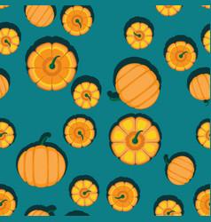 autumn orange pumpkins blue-green background vector image