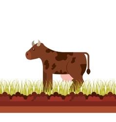 Cow animal farm icon vector