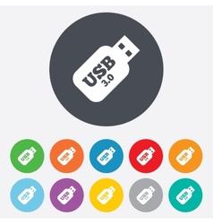 Usb 30 Stick sign icon Usb flash drive button vector image