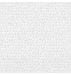 Styrofoam Background vector image vector image