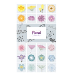 Colorful floral collection vector