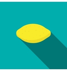 Lemon icon flat style vector image vector image