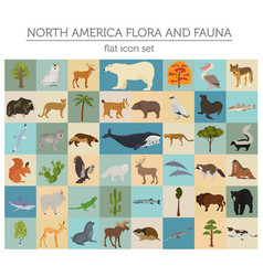 North america flora and fauna flat elements vector
