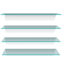 Glass shelves vector image