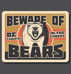 bear animal vintage banner of hunting sport design vector image