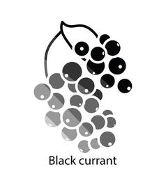 Black currant icon vector image