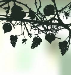 Bunch grapes plant background vector