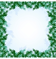 Christmas branches background vector image