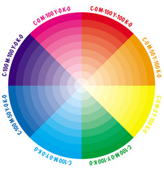 color wheel with numbers cmyk amount vector image